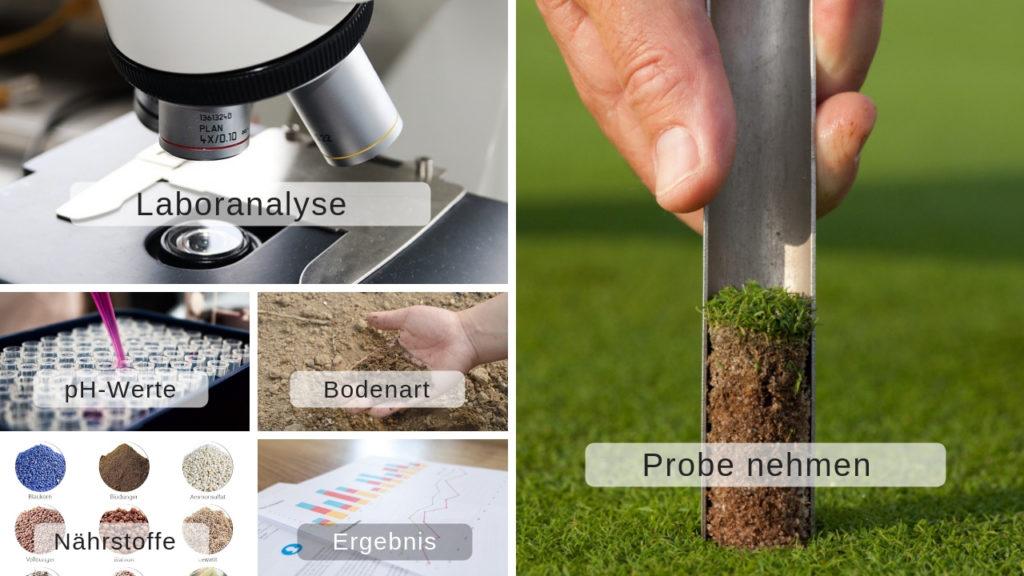 Beliebt Bevorzugt Rasengrün-Blog: Der ideale pH-Wert für einen perfekten Rasen #SS_91